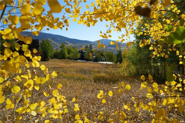 Property for sale in SIlverthorne, Colorado